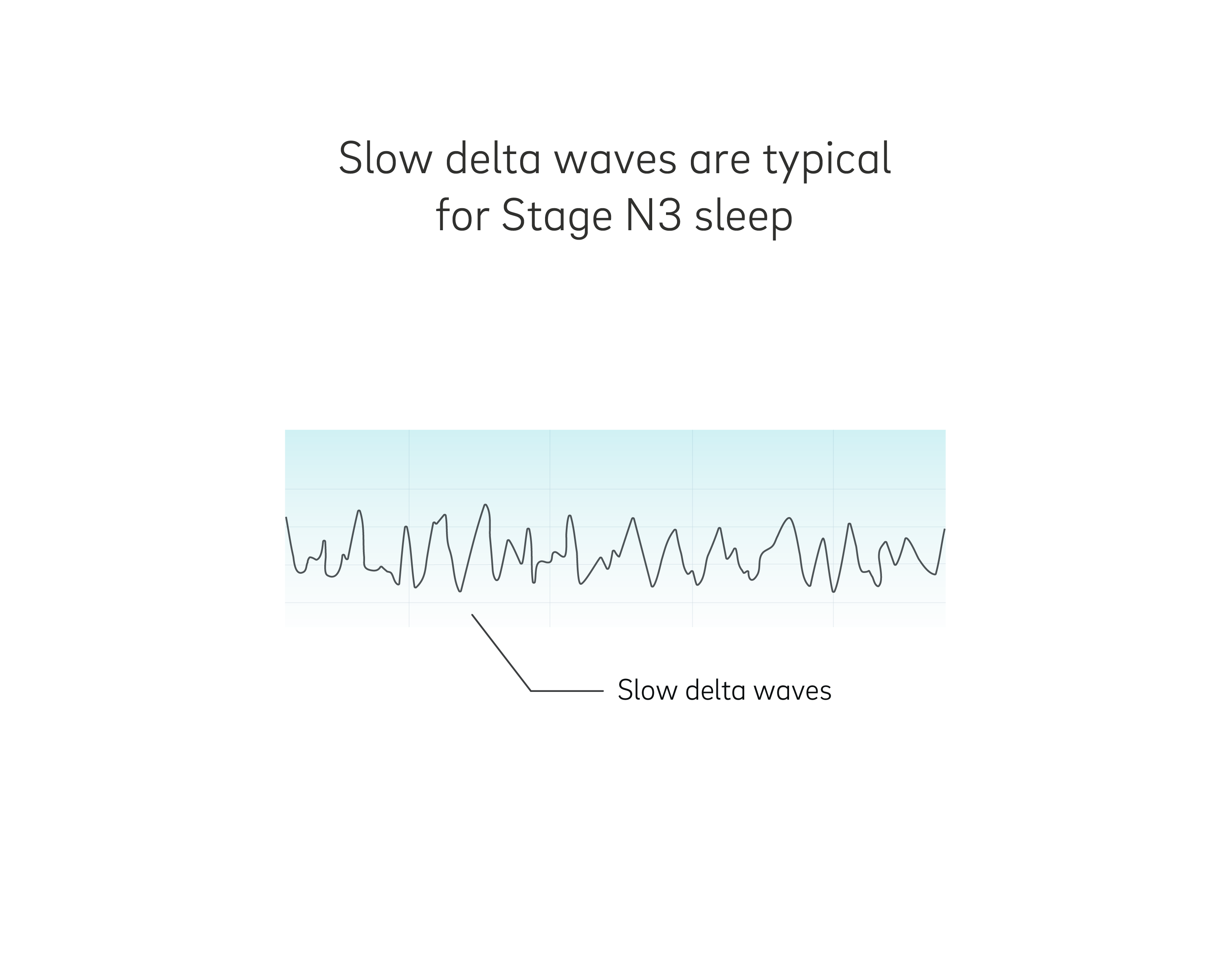 Slow delta waves in deep sleep
